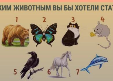 Выберите животное и узнайте о своем внутреннем мире