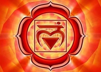 Корневая чакра Муладхара: значение, описание, за что отвечает, где находится