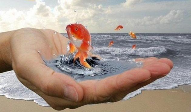 ispolnenie-zhelanij-s-pomoshhju-vody