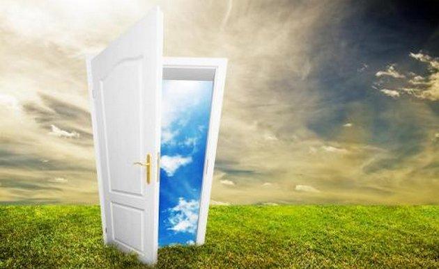 dveri-zhelanij