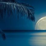 Волшебный лунный календарь (3-9 ноября 2014)