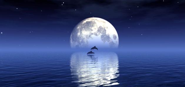музыкальный фестиваль сны в 21 лунные сутки зайти главную