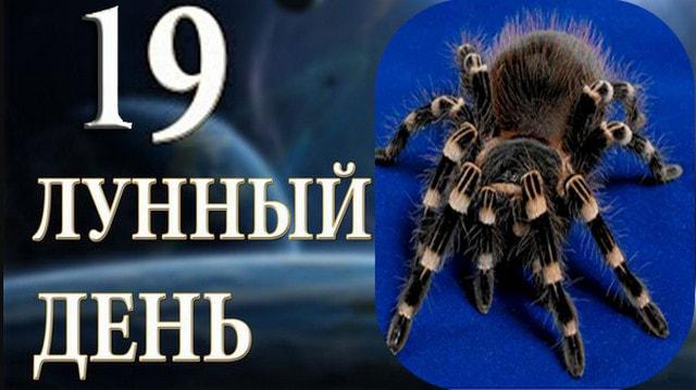 19-devjatnadcatyj-lunnyj-den-sutki-harakteristika