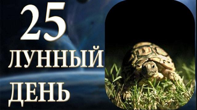 25-dvadcat-pjatyj-lunnyj-den-sutki-harakteristika
