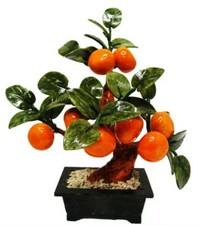 derevo-po-fen-shuj-mandarinovoe