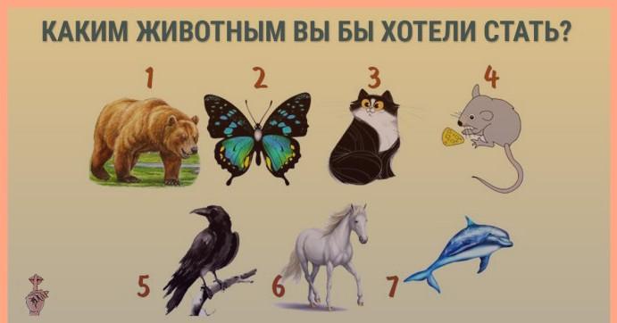 Каким животным вы бы хотели стать